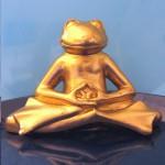 Montagsmeditation: Frosch meditiert